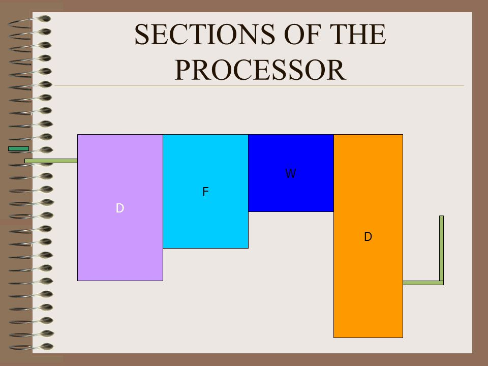 SECTIONS OF THE PROCESSOR