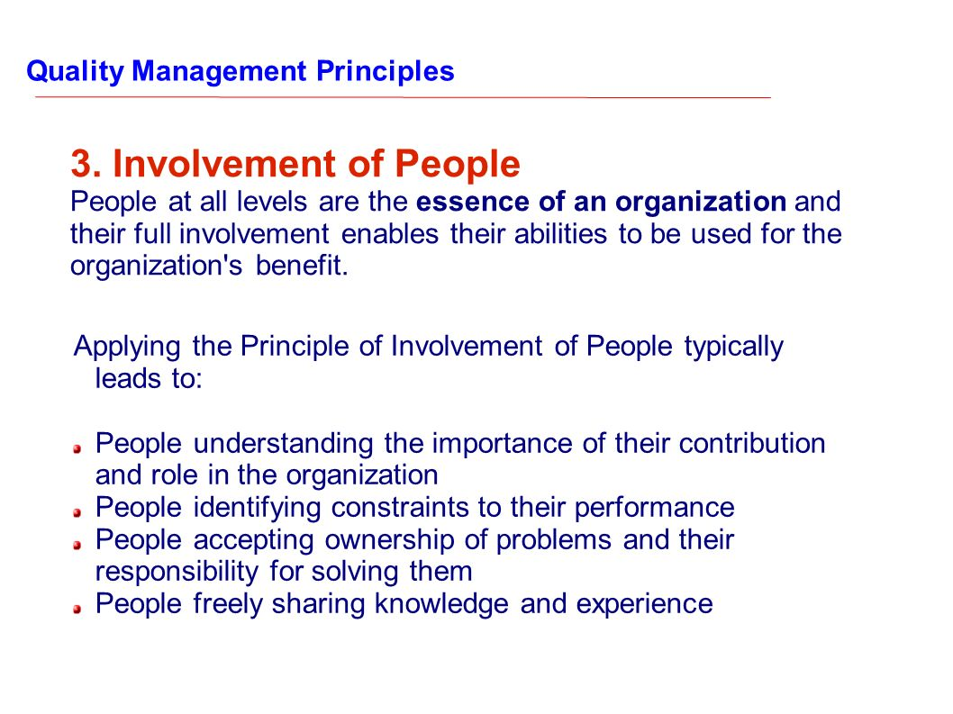 3. Involvement of People Quality Management Principles