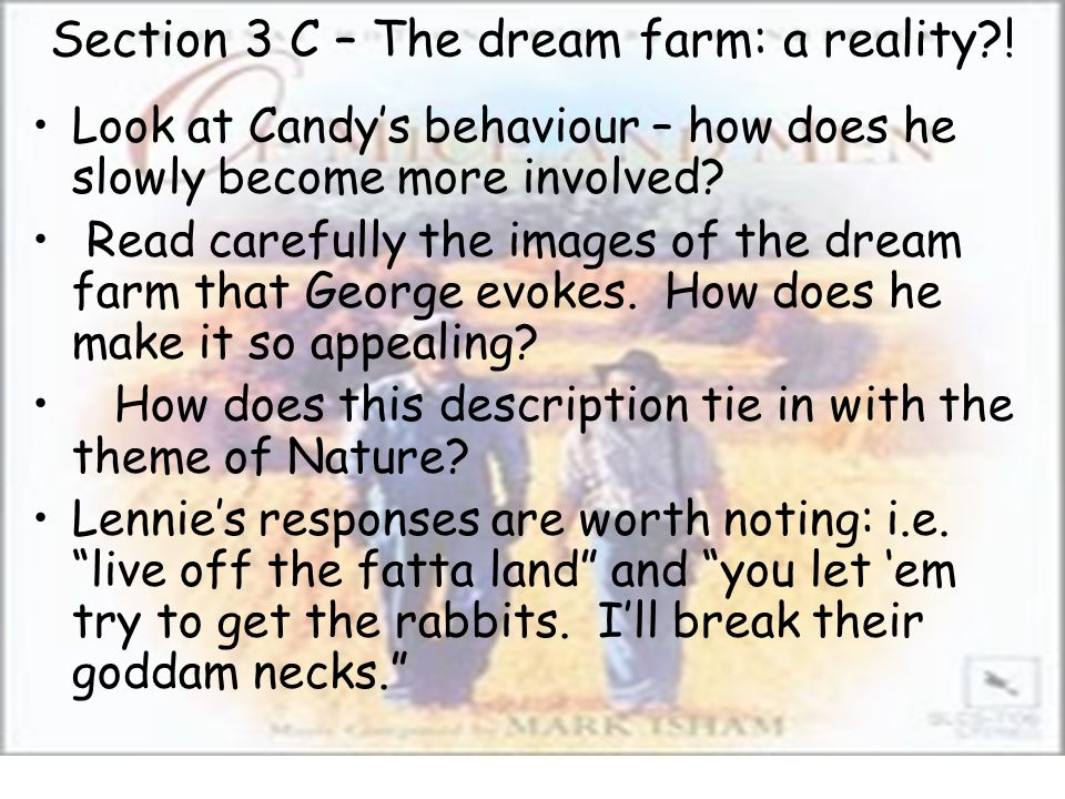 Section 3 C – The dream farm: a reality !