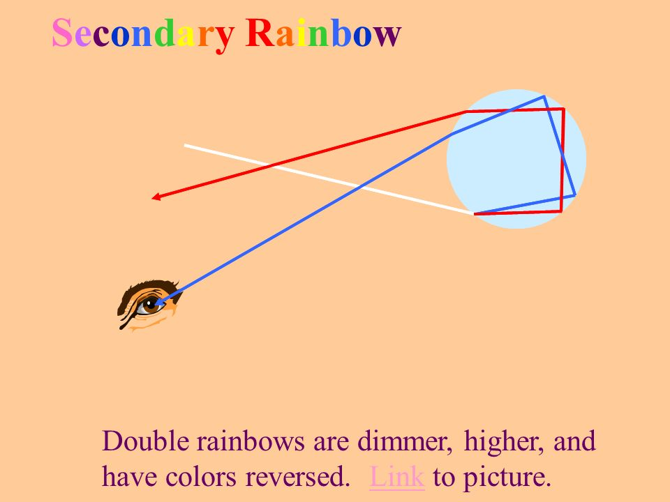 Secondary Rainbow Double rainbows are dimmer, higher, and have colors reversed. Link to picture.
