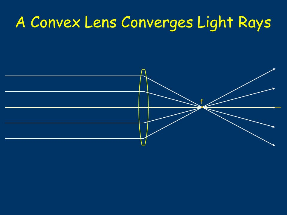 A Convex Lens Converges Light Rays