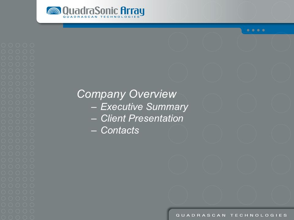 Company Overview Executive Summary Client Presentation Contacts