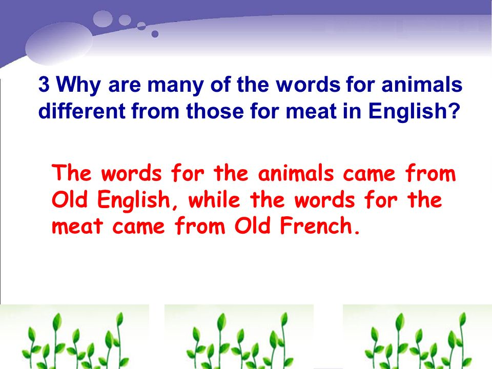 3 Why are many of the words for animals