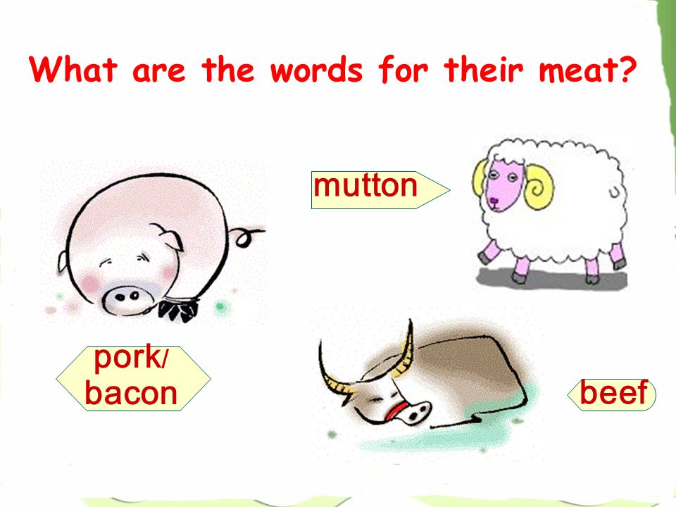 What are the words for their meat