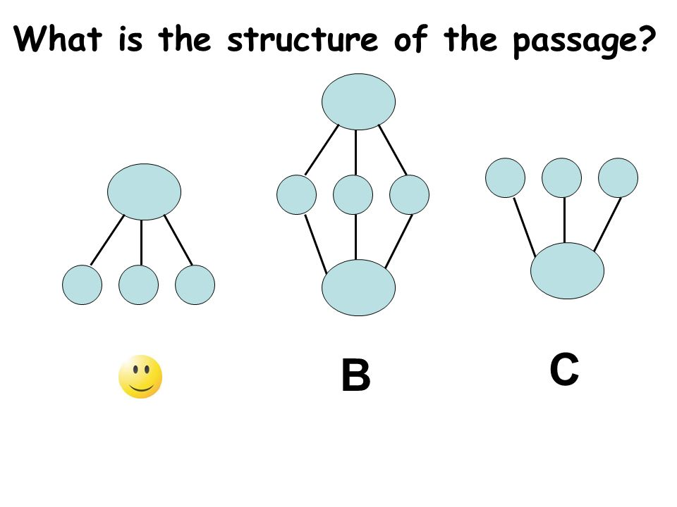 What is the structure of the passage