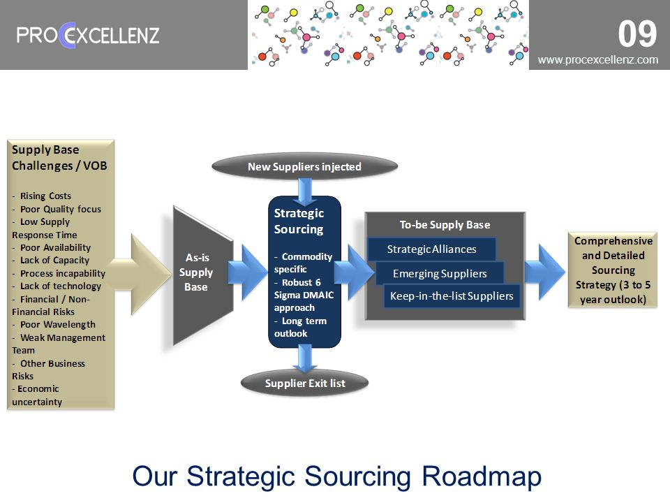 Our Strategic Sourcing Roadmap