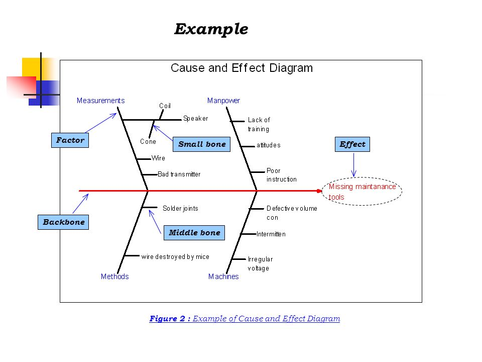 Figure 2 : Example of Cause and Effect Diagram