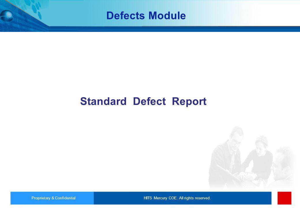 Standard Defect Report