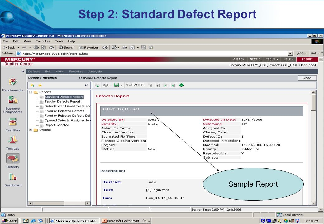 Step 2: Standard Defect Report