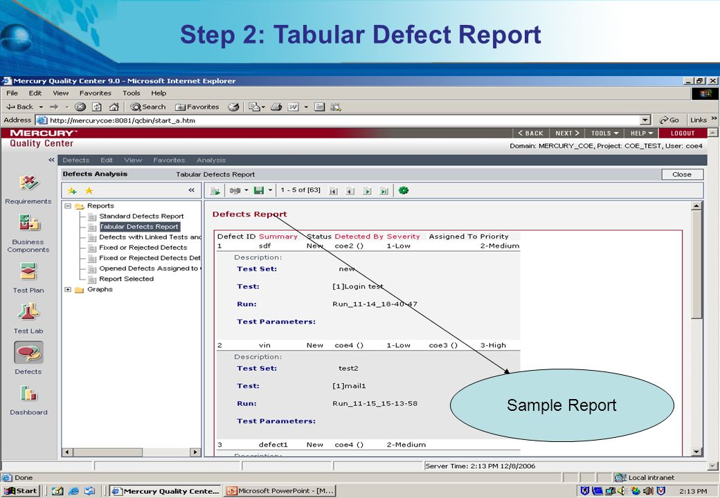 Step 2: Tabular Defect Report