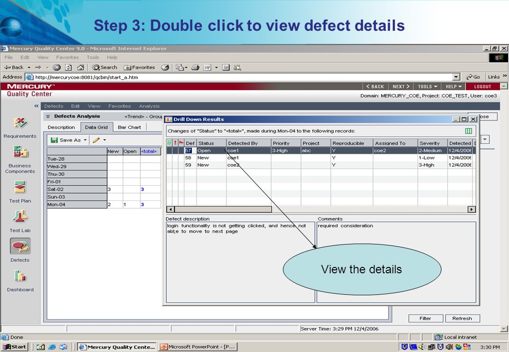 Step 3: Double click to view defect details