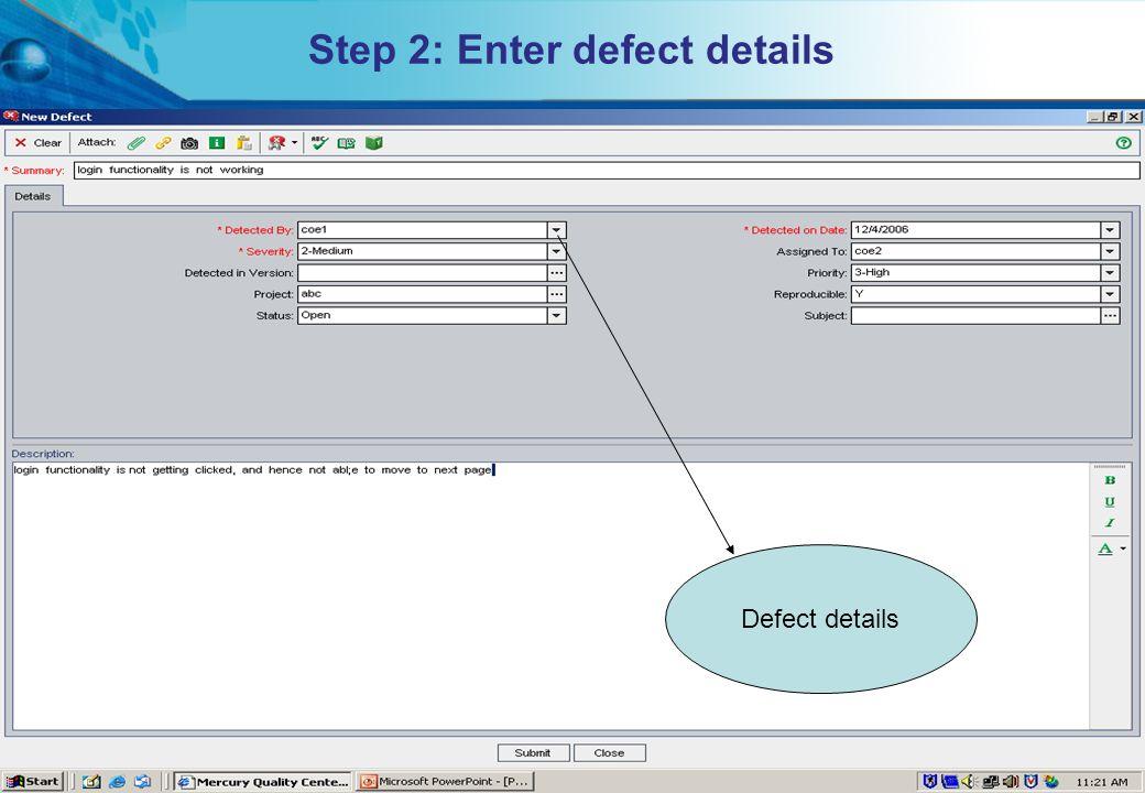 Step 2: Enter defect details