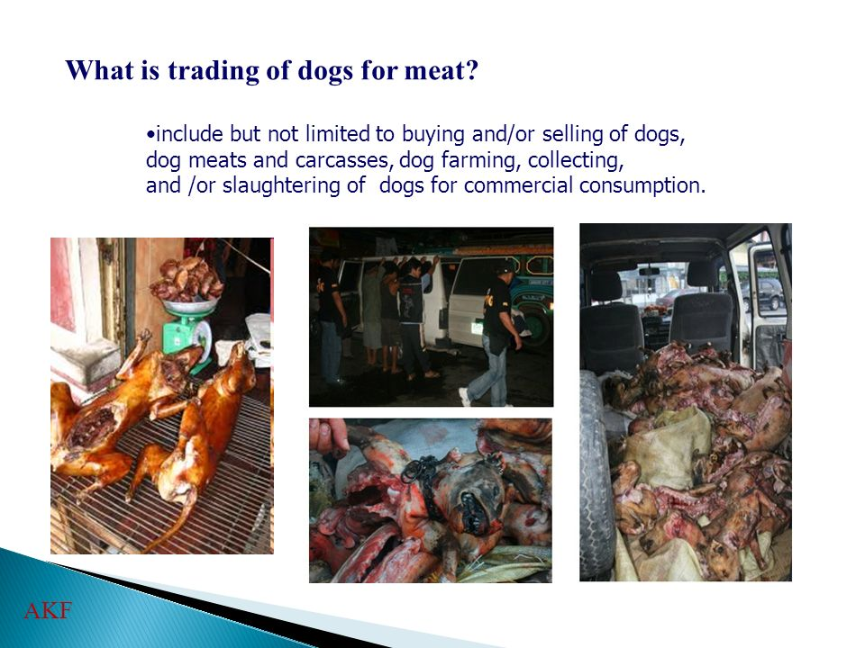 What is trading of dogs for meat