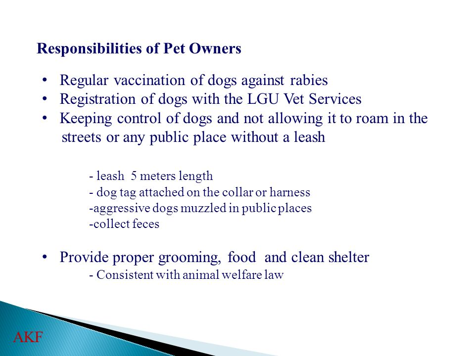Responsibilities of Pet Owners