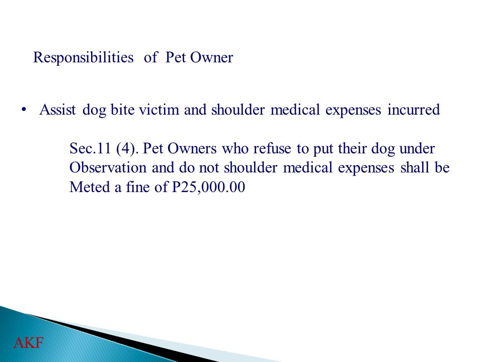 Responsibilities of Pet Owner