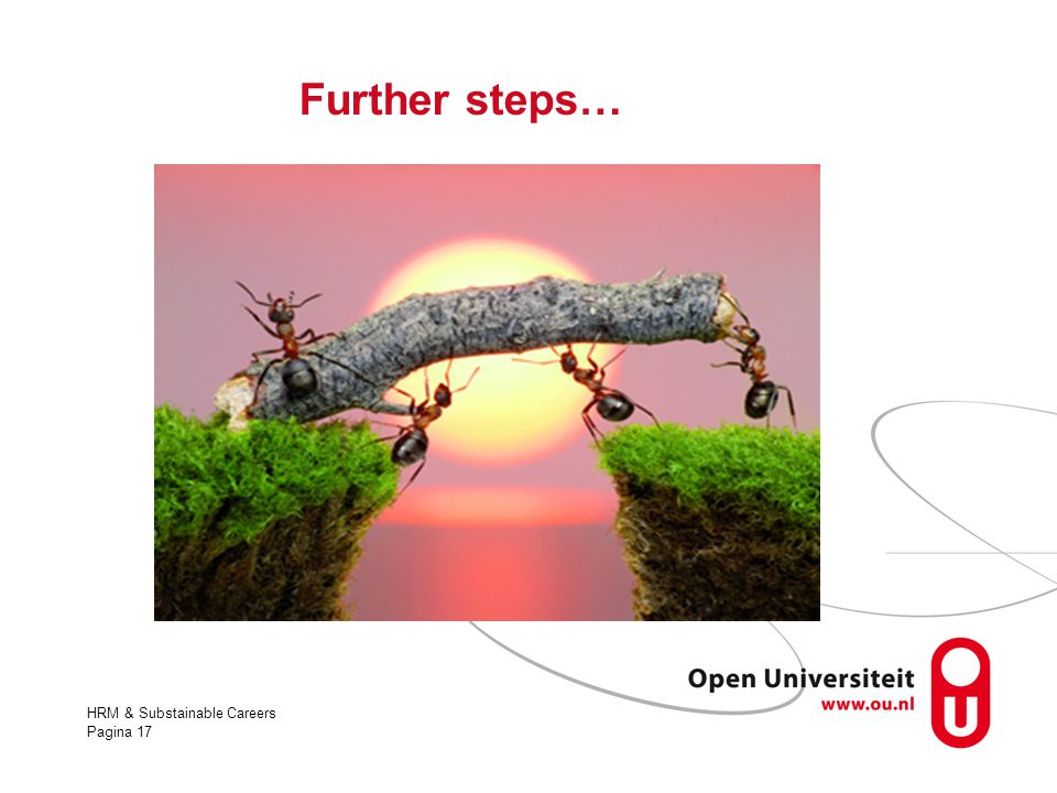 Further steps… HRM & Substainable Careers
