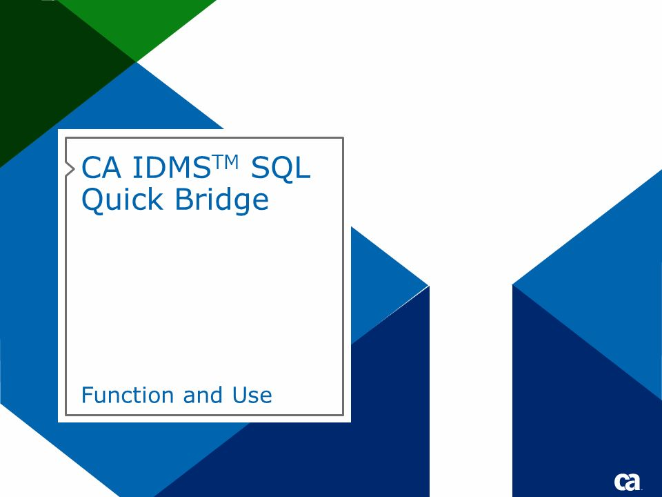 CA IDMSTM SQL Quick Bridge