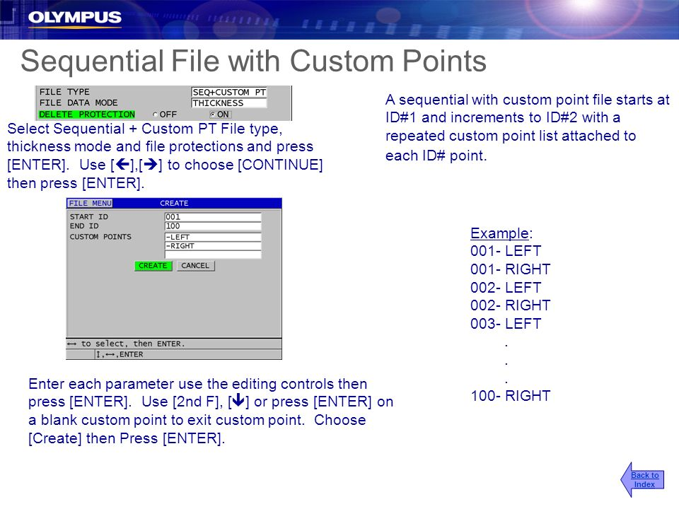 Sequential File with Custom Points
