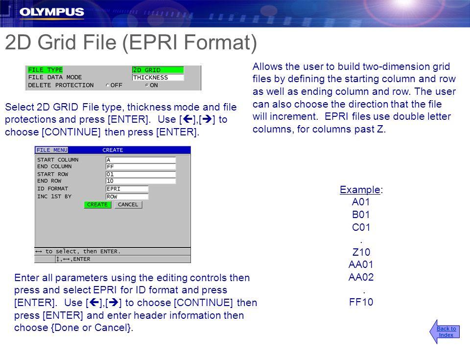 2D Grid File (EPRI Format)
