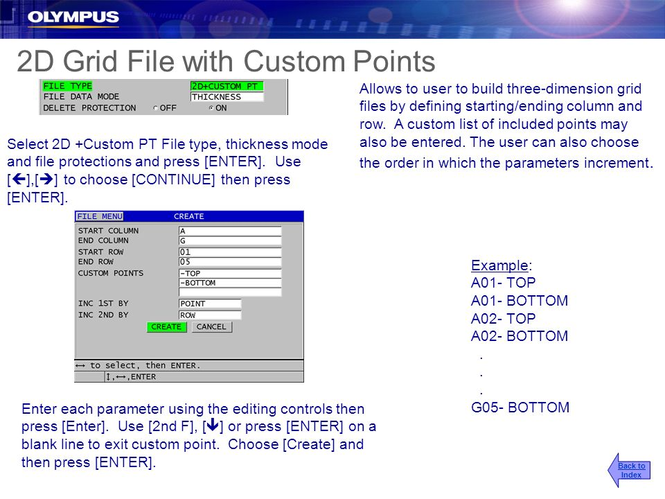 2D Grid File with Custom Points