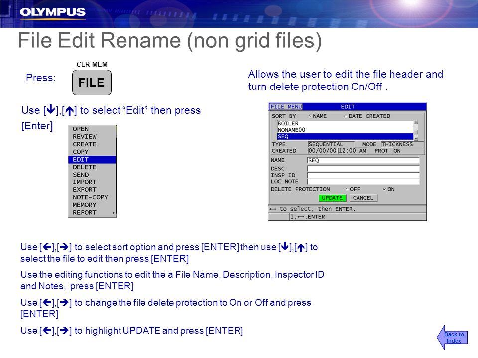 File Edit Rename (non grid files)