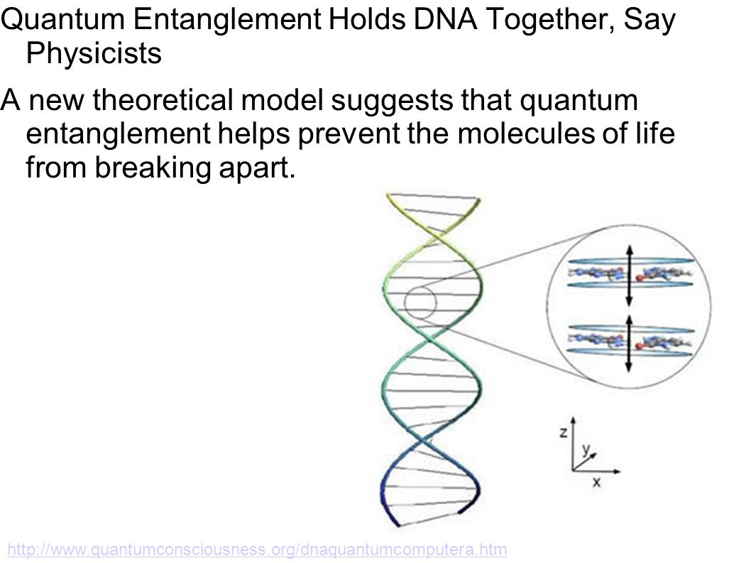 Quantum Entanglement Holds DNA Together, Say Physicists