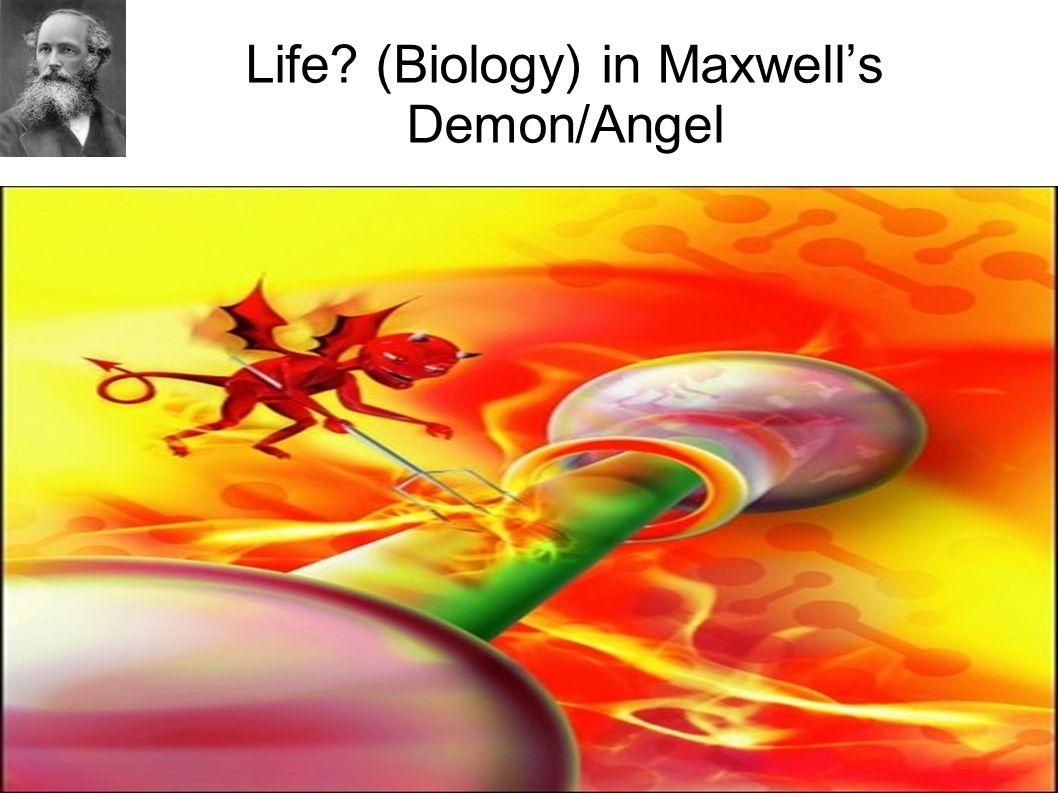 Life (Biology) in Maxwell's Demon/Angel