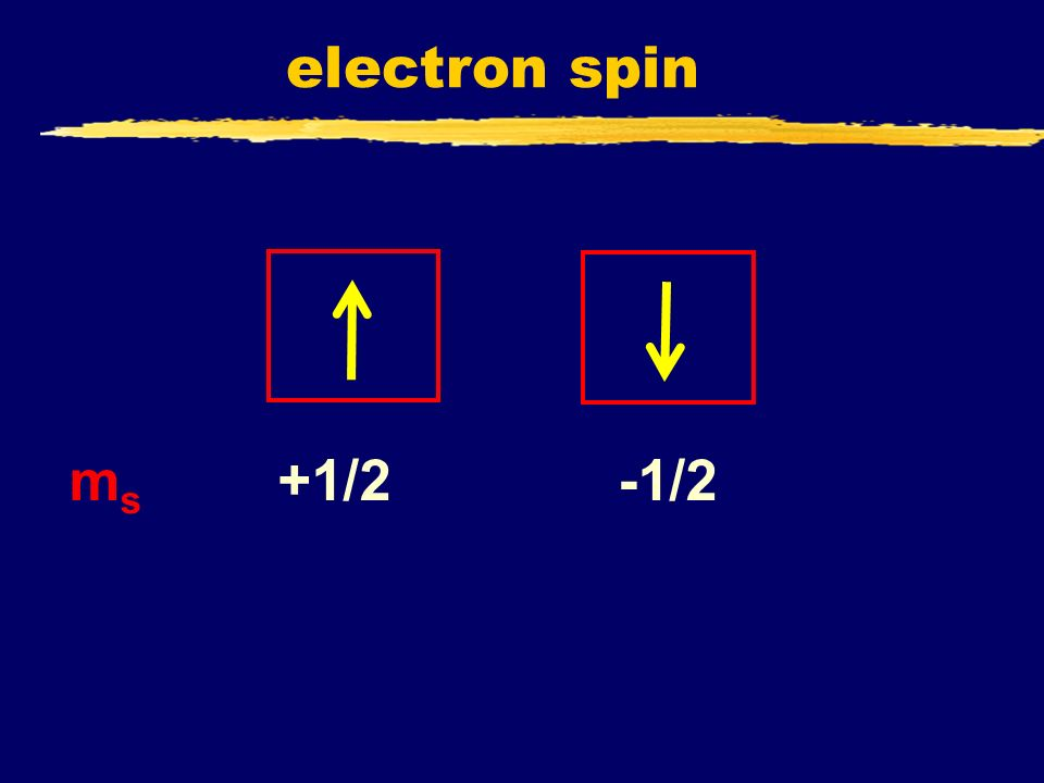 electron spin ms +1/2 -1/2