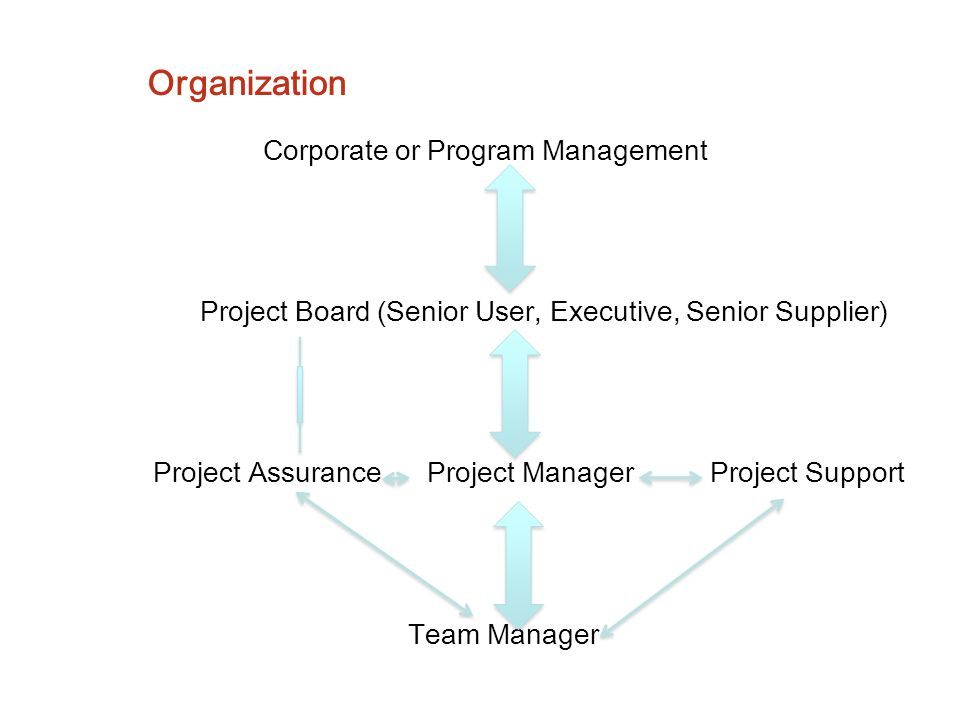 Organization Corporate or Program Management