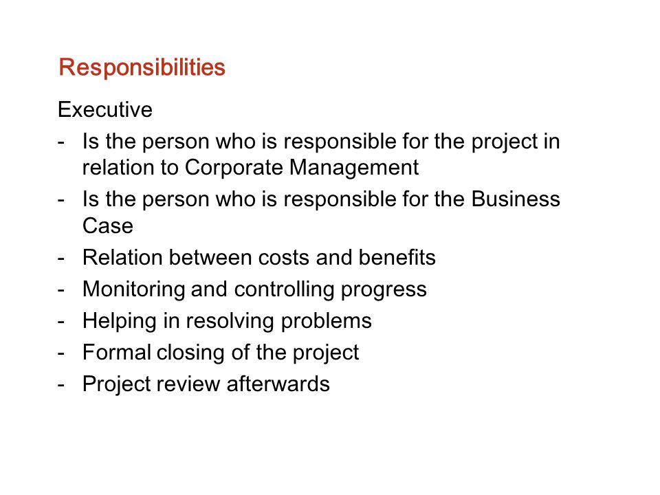 Responsibilities Executive