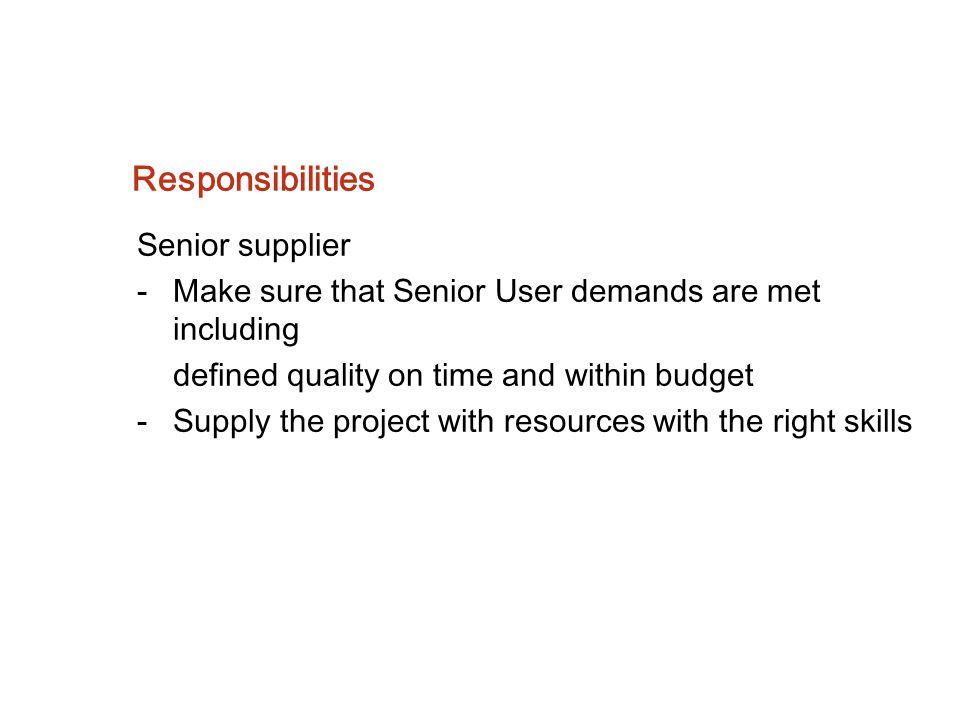 Responsibilities Senior supplier