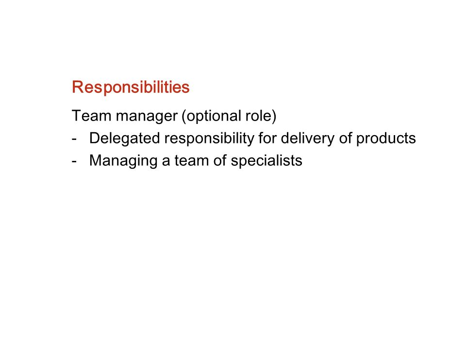 Responsibilities Team manager (optional role)