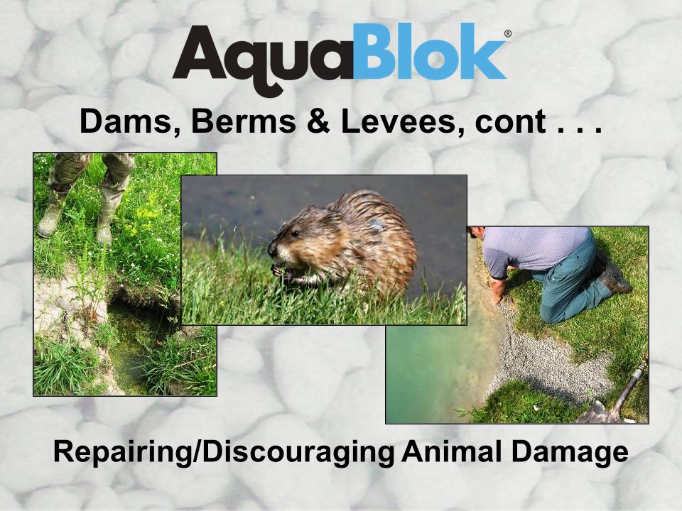 Dams, Berms & Levees, cont . . . Repairing/Discouraging Animal Damage