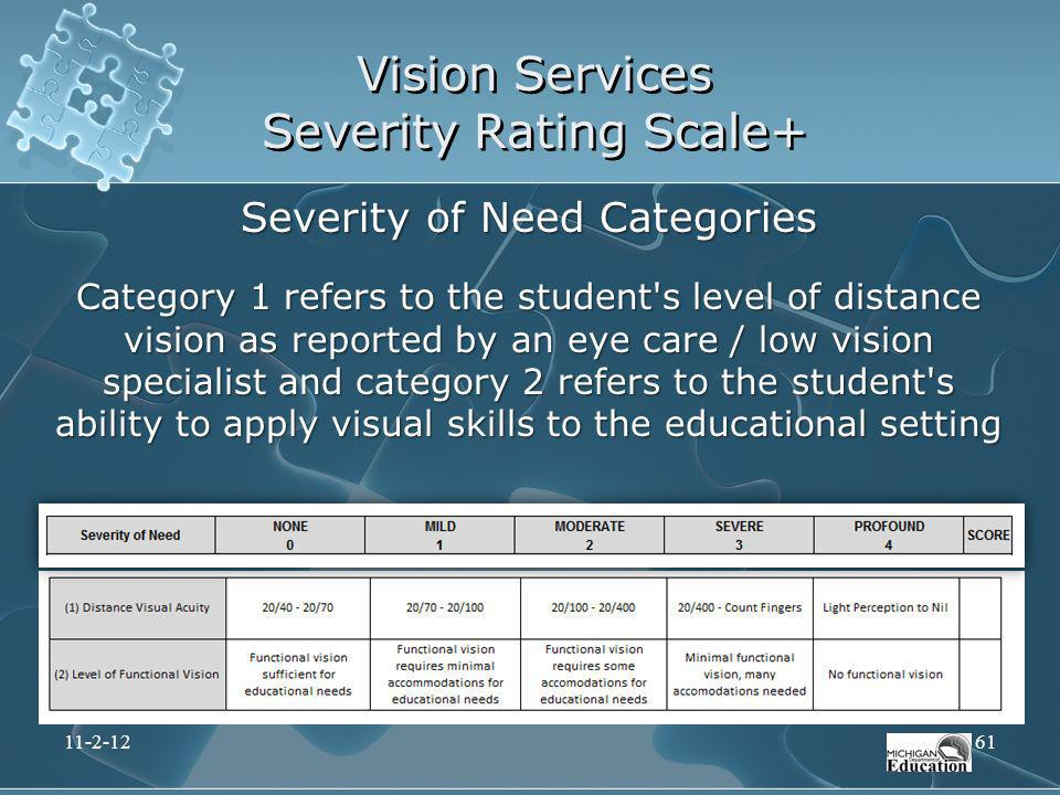 Vision Services Severity Rating Scale+