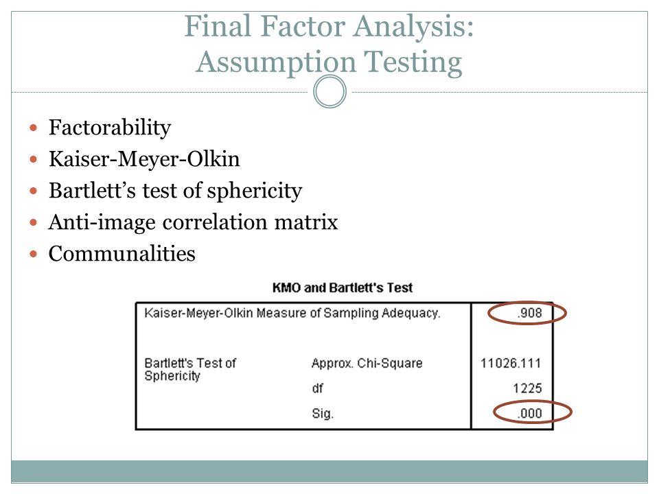 Final Factor Analysis: Assumption Testing