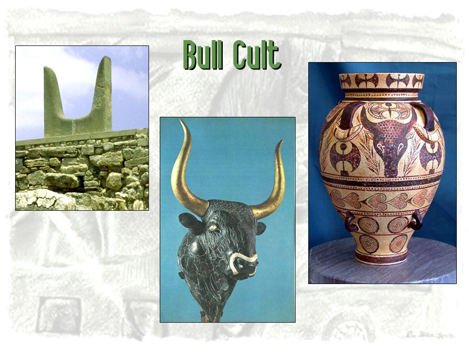 Bull Cult