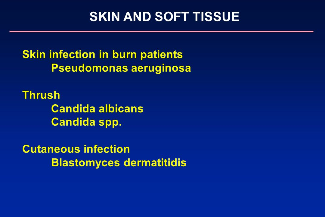 Skin infection in burn patients Pseudomonas aeruginosa Thrush