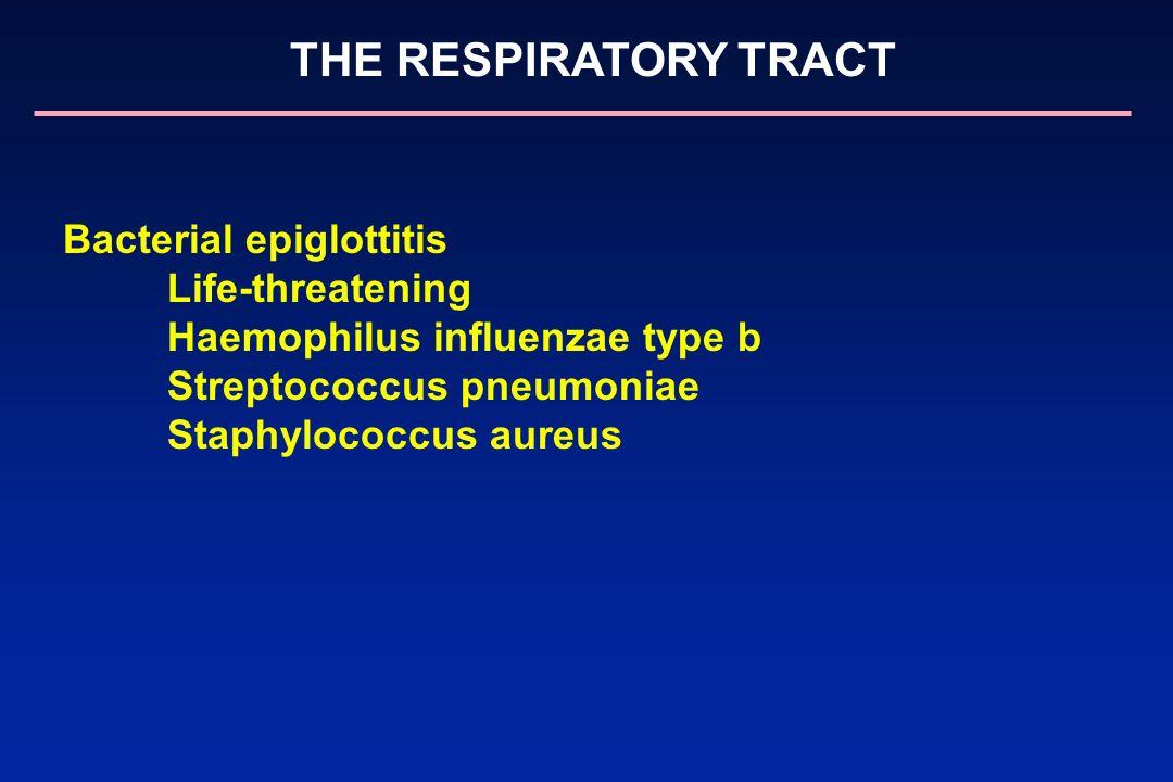 Bacterial epiglottitis Life-threatening Haemophilus influenzae type b