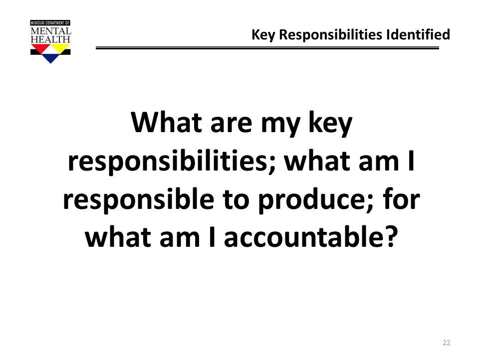 Key Responsibilities Identified