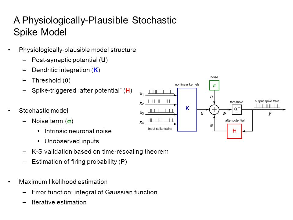 A Physiologically-Plausible Stochastic Spike Model