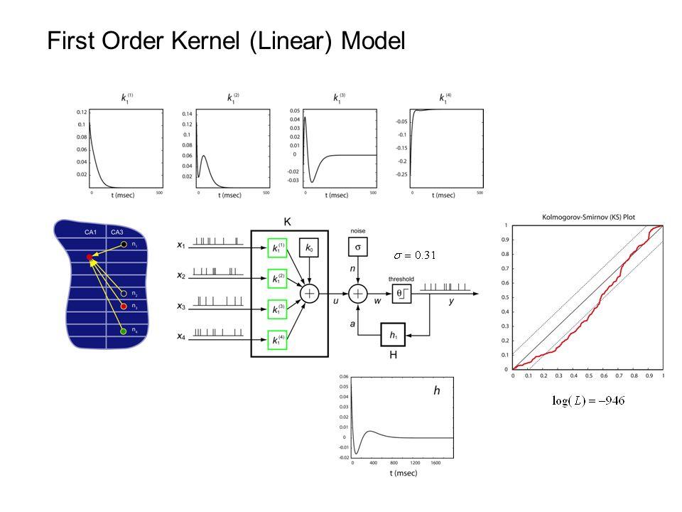 First Order Kernel (Linear) Model