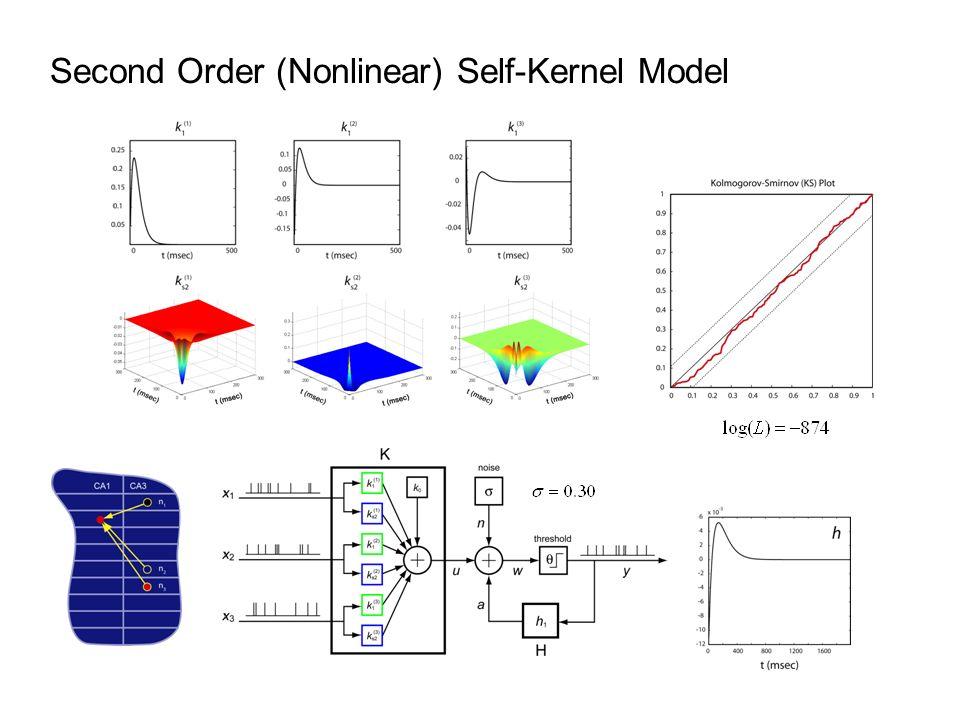 Second Order (Nonlinear) Self-Kernel Model
