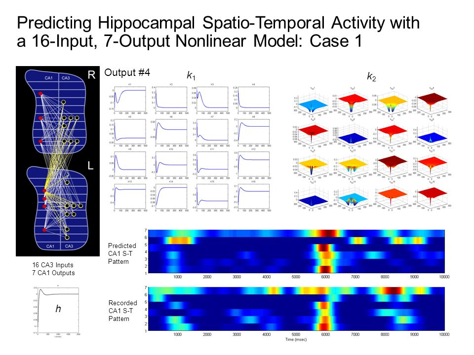 Predicting Hippocampal Spatio-Temporal Activity with a 16-Input, 7-Output Nonlinear Model: Case 1