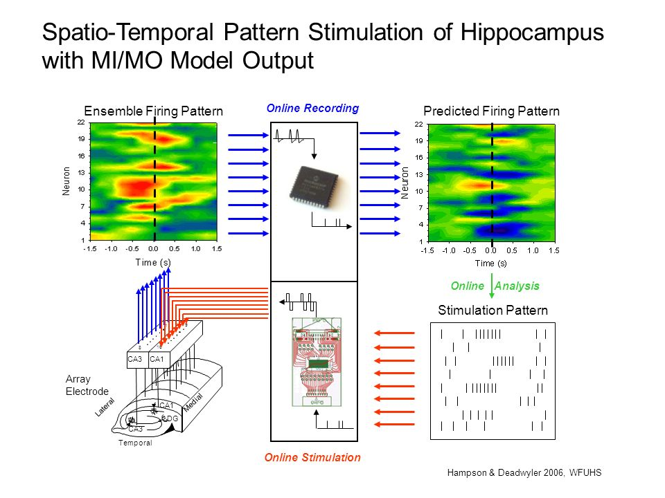 Spatio-Temporal Pattern Stimulation of Hippocampus with MI/MO Model Output