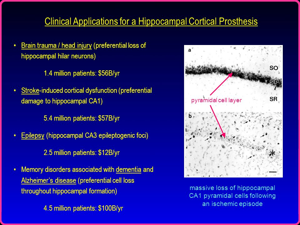 Clinical Applications for a Hippocampal Cortical Prosthesis