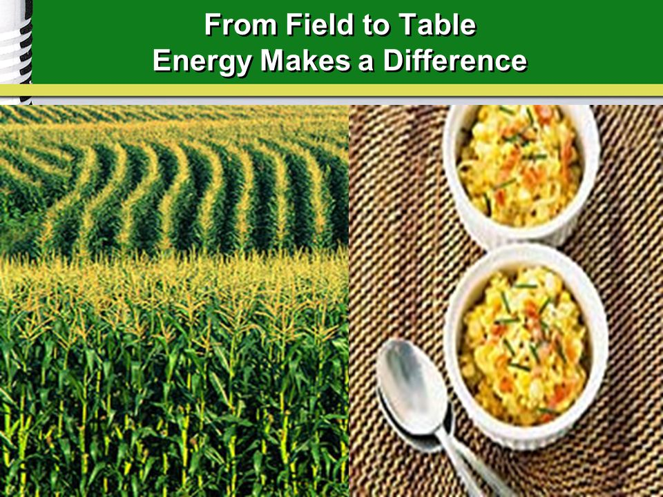 From Field to Table Energy Makes a Difference