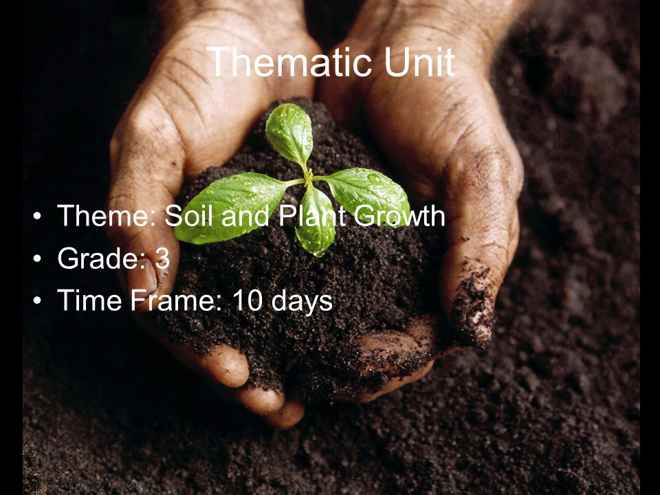 Thematic Unit Theme: Soil and Plant Growth Grade: 3