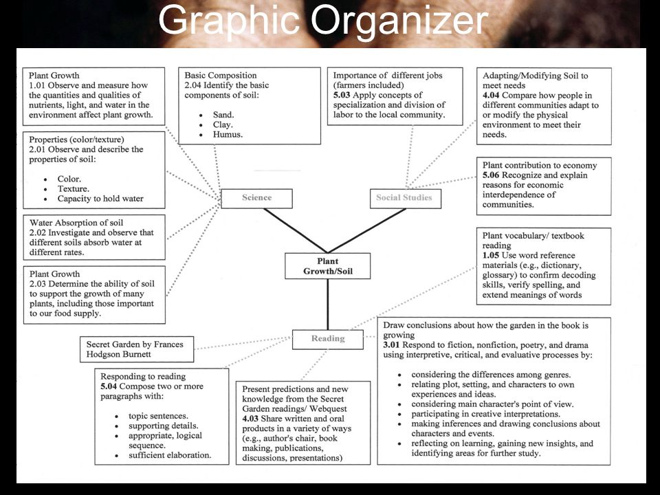Graphic Organizer To insert this slide into your presentation