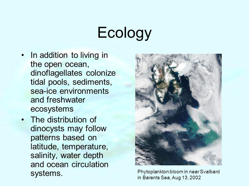Ecology In addition to living in the open ocean, dinoflagellates colonize tidal pools, sediments, sea-ice environments and freshwater ecosystems.