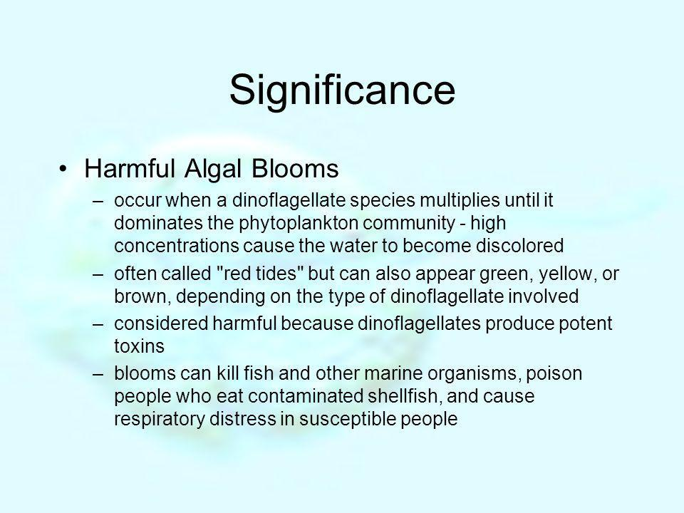 Significance Harmful Algal Blooms